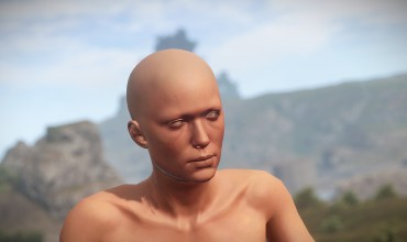 Mise à jour de Rust, Devblog 105 : tits, boobs & knockers
